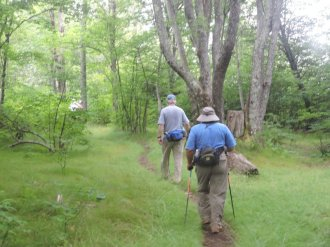 On the trail between 2nd and Skinny Dip Falls